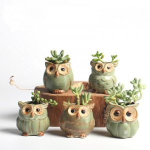 Owl Design Plant Pots 6