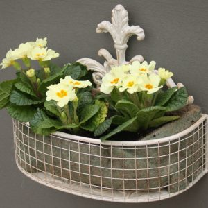 Set Of 2 Metal Wall Baskets In Cream 2